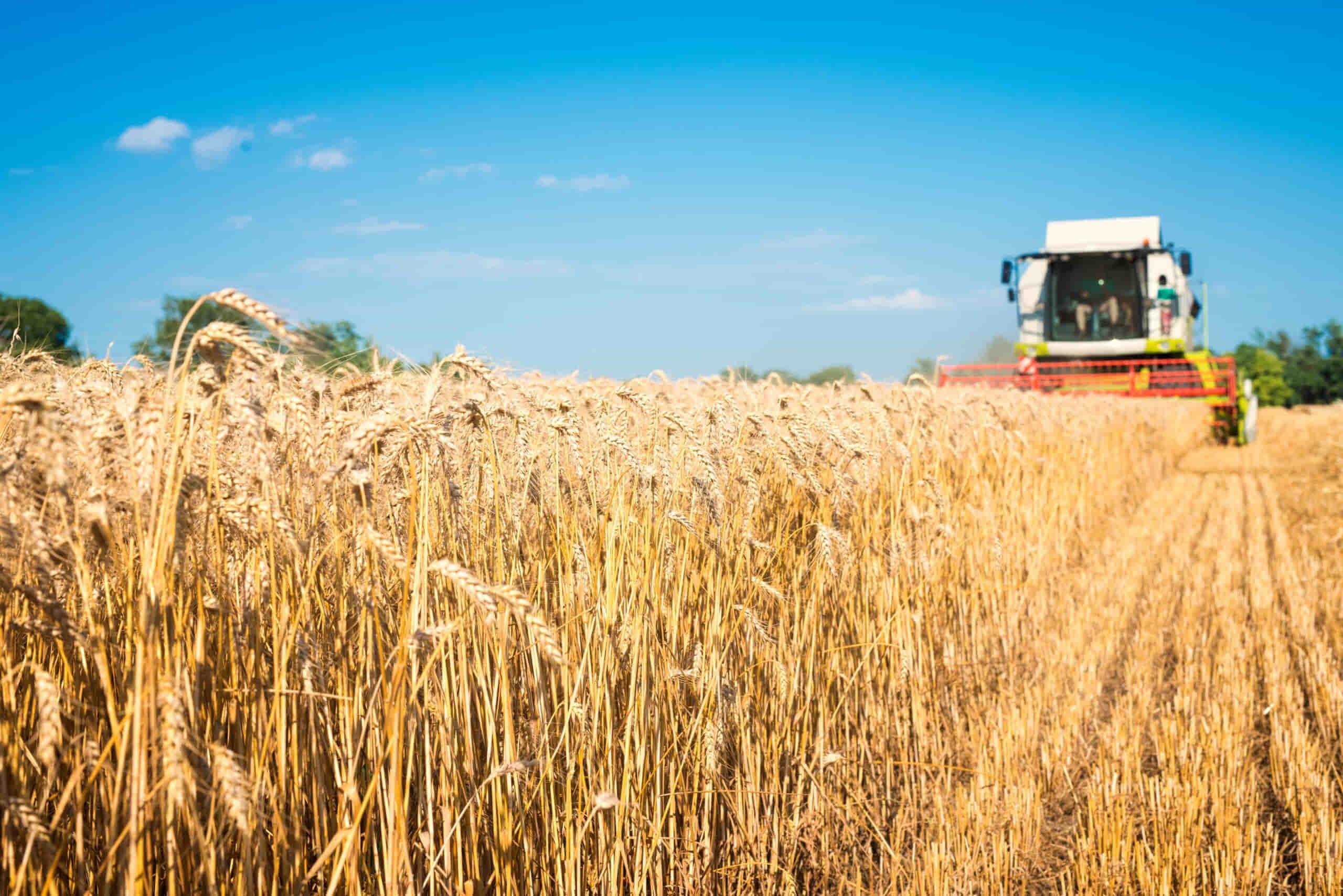 cosechadora agropecuaria