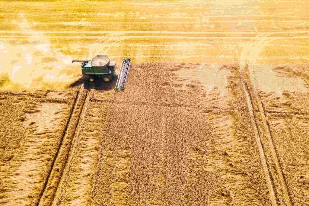 cosechadora en campo de cordoba argentina