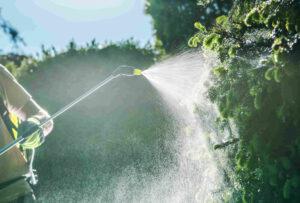persona rociando insecticida en cultivos agrícolas de campo argentina