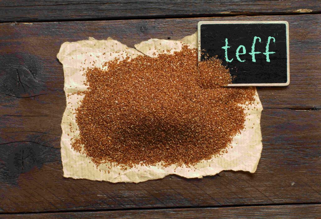 cosecha y siembra de teff por productores agrícolas de argentina